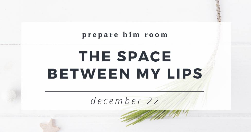 The Space Between My Lips : Prepare Him Room